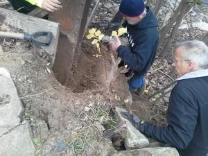 bunkerinspect